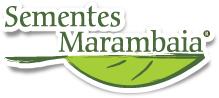 Sementes_Marambaia